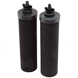 Berkey BB9-2 Black Water Filter Replacement Elements