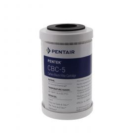 Pentek CBC-5 Cyst Reduction Water Filters (4-7/8-inch x 2-7/8-inch)