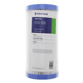 Pentek R30-BB Pleated Polyester Water Filter (9-3/4-inch x 4-1/2-inch)